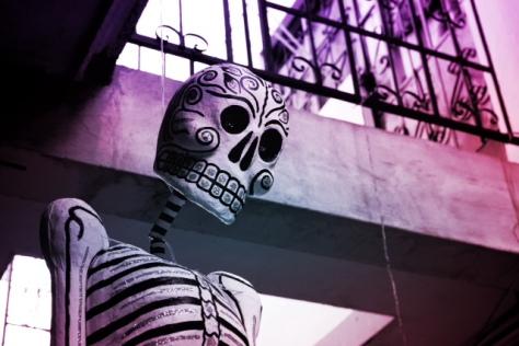 Cinco de mayo - Sugar skull